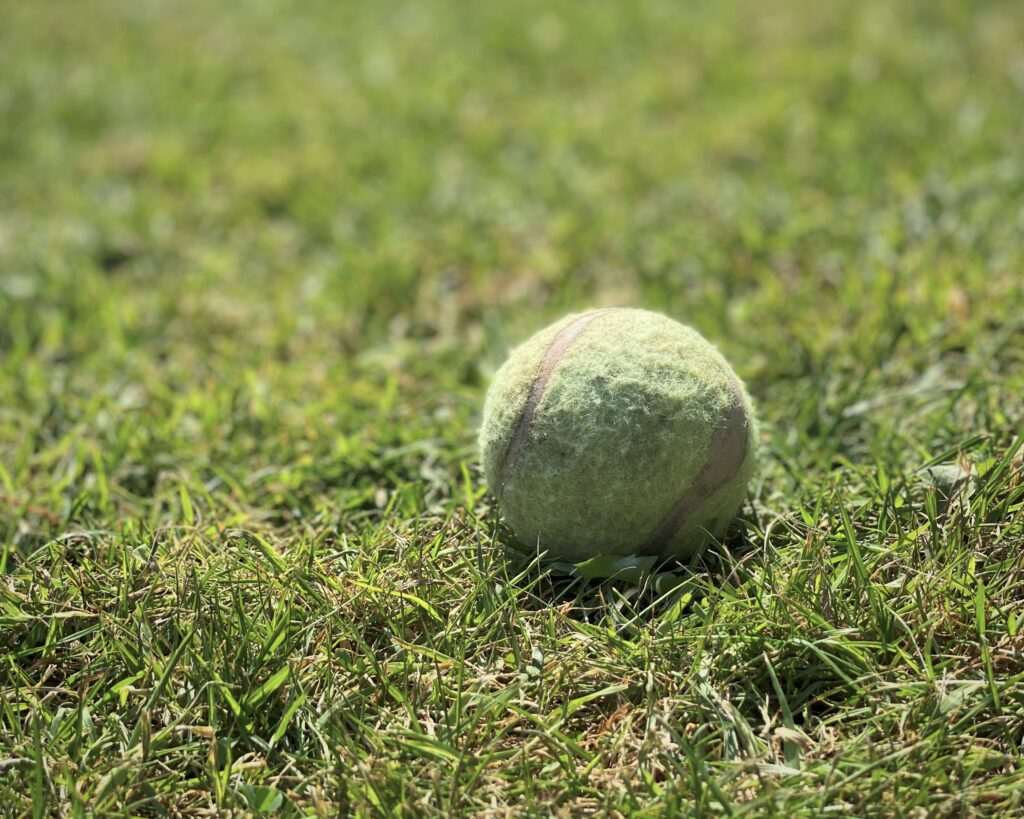 A green ball on parched grass